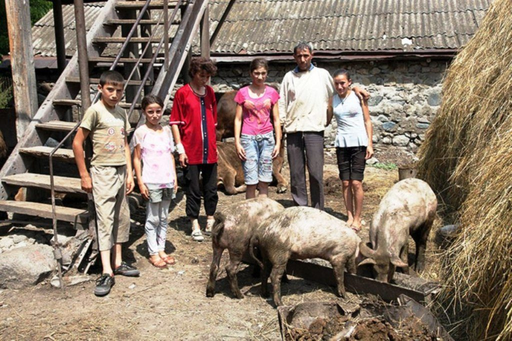 Familie (2 Erwachsene, 4 Kinder) mit Schweinen
