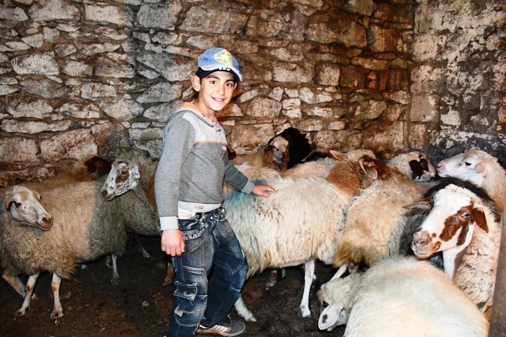 Kleiner Junge mit Schafen - Ihre Spenden helfen