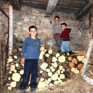 Drei Jungen auf einem Holzstapel